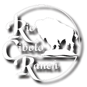 Rio Cibolo Ranch Logo White